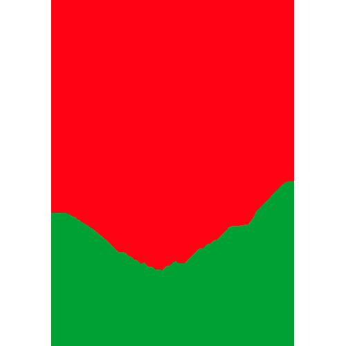 civa_logo0.png