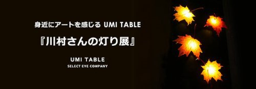 UMI 川村さんの灯り展.jpg