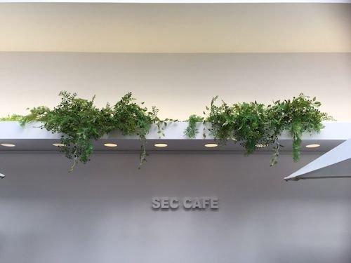 seccafe-2017^01-07-1.jpg