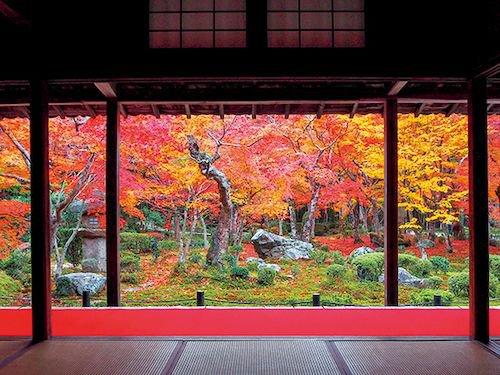 kyoto_pic01.jpg