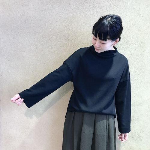 WASABI_171111_0933.jpg