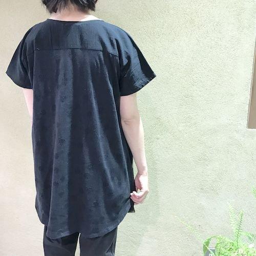 wasabi2_170319_0528.jpg