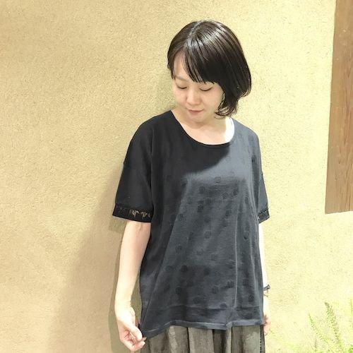 wasabi2_170324_0609.jpg