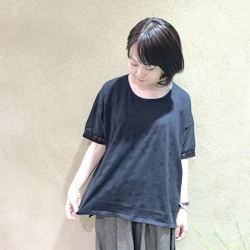 wasabi2_170324_0610.jpg