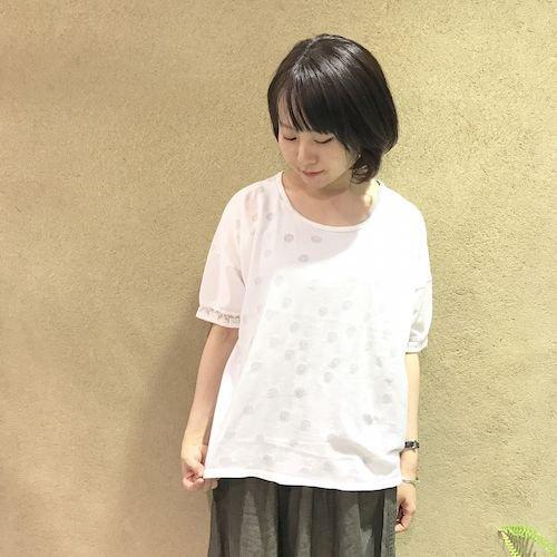 wasabi2_170324_0632.jpg
