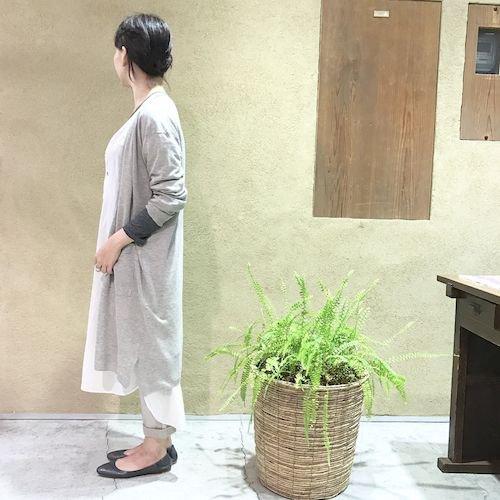 wasabi2_170408_0863.jpg
