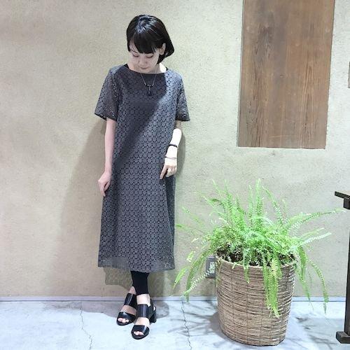 wasabi3_170503_0264.jpg