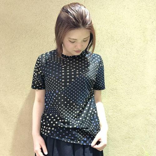 wasabi3_170504_0296.jpg