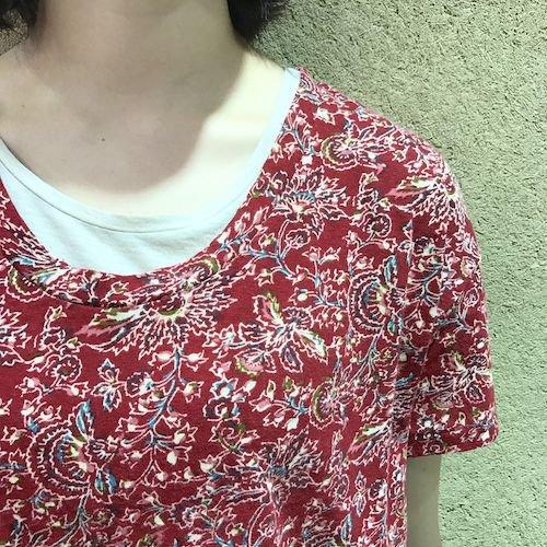wasabi3_170521_0539.jpg