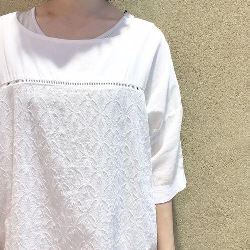 wasabi3_170527_0671.jpg