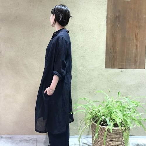 wasabi3_170616_0972.jpg